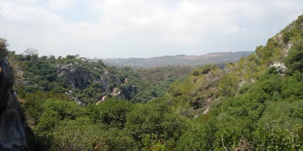 Im Carmel Mountain National Park