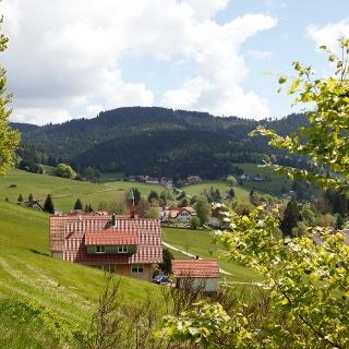 Blick über Obertal