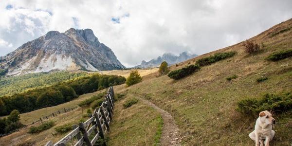 Vom Eko Katun Štavna folgt man dem Pfad rechts am Zaun vorbei