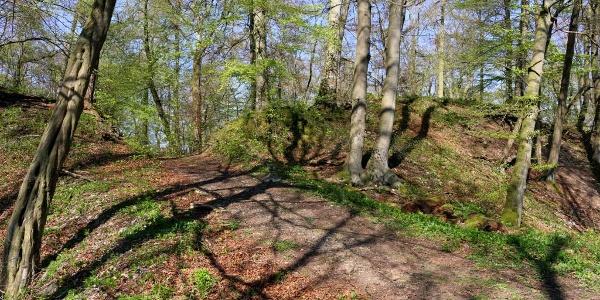 Eingang zur Wildburg