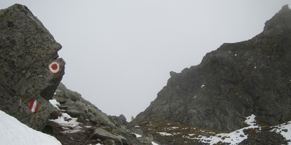 Kurz vor der Gollingscharte (2.326 m) (03.10.2015)