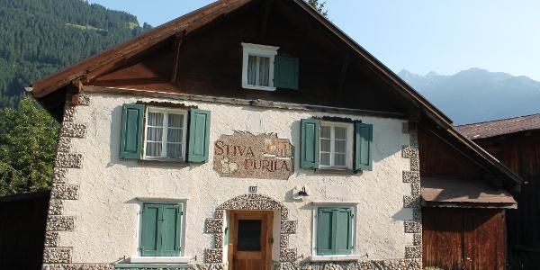 Stiva Purila in Cavardiras