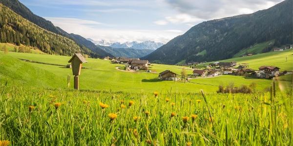 "Il sentiero ""Talblickweg"" della Val Casies"