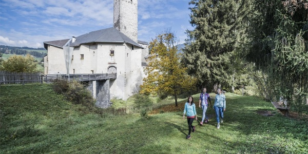 Castle Welsperg