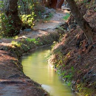 Sentiero Latschanderwaal - Laces