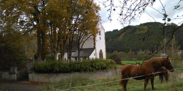 Hirsauer Kirche
