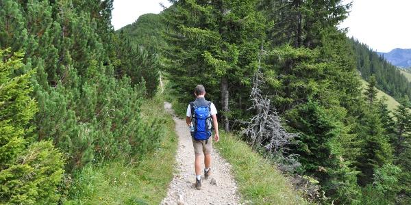Kleine nette Wege - auch der 2. Tag bietet sehr viel Abwechslung und wunderschöne Ausblicke