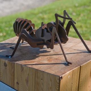 Ameisenpfad