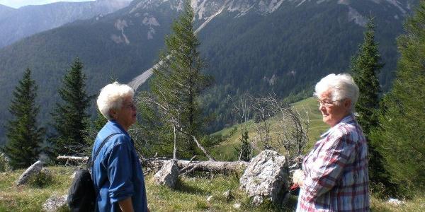Blick von der Dürren Leitn zum Schneeberg