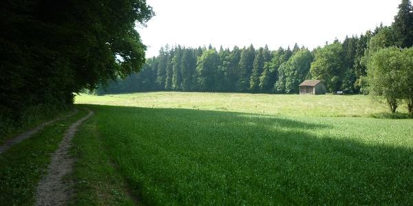"""Rückweg ins Dorf über die """"Schwell"""""""