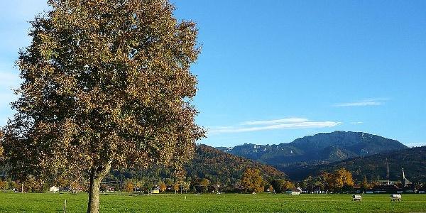 Wiesenweg zwischen Benediktbeuern und Bichl