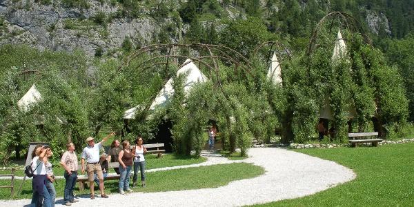 Besucher im Weidendom