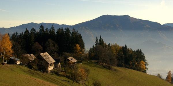 Blick zum Almgasthaus Puster
