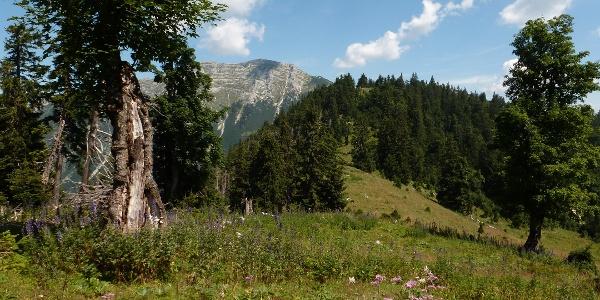 Alpintour Hochkar Dürrenstein
