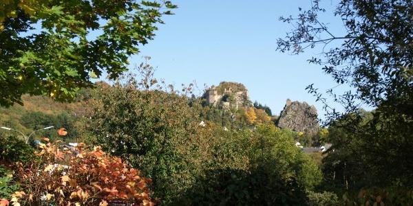 Ruine Steinkallenfels im Hahnenbachtal