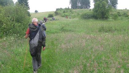 Sumpfgelände zwischen Dreiherrenstein und Elbingerode