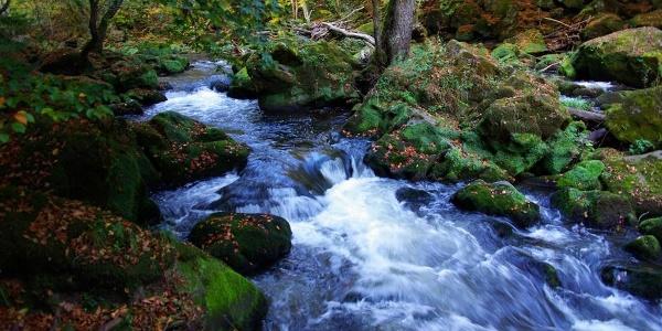 Wasserfälle im Herbst