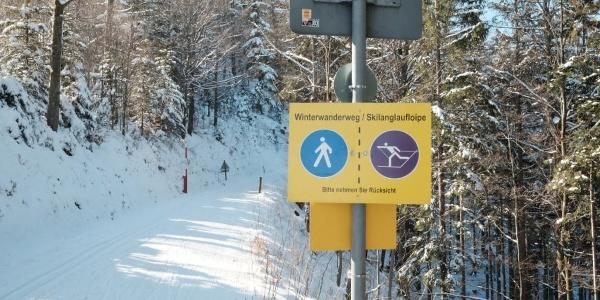 Auf dem Premium-Winterwanderweg
