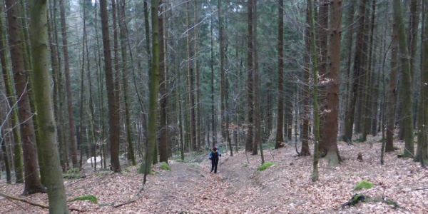 steiler Aufstieg auf den Schwarzwihrberg