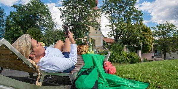 Apfelliegen