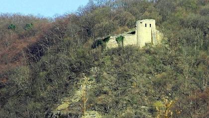 die Kunitzburg (aus Richtung Jägerberg betrachtet)