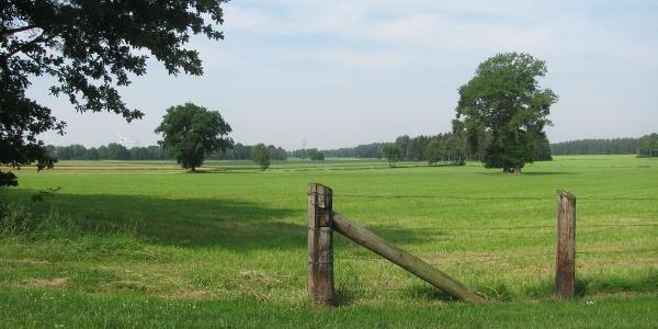 Landschaft bei Kakerbeck