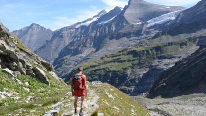 Abstieg zum Mooserboden-Stausee mit Blick auf Tenn, Wiesbachhorn und Klockerin