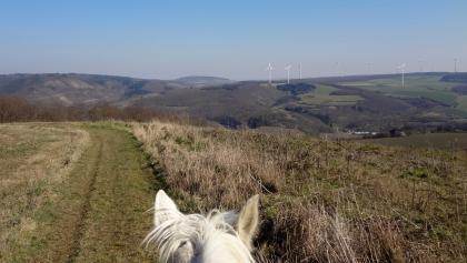 Blick über die Hügellandschaft