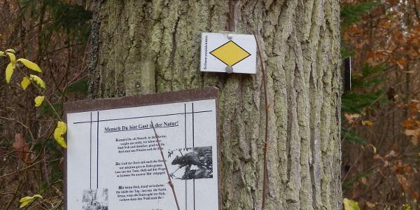 F4: Fußweg/Radweg zum Ulrichstein, gelbe Raute