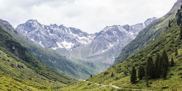 Blick Richtung Tübinger Hütte