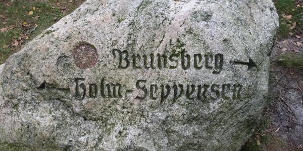 zum NSG Brunsberg