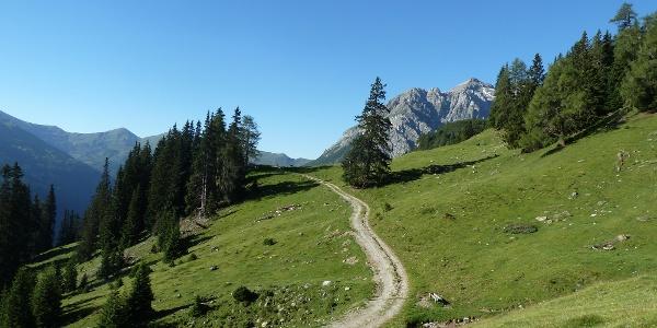 Weggabelung oberhalb der Kastenalmhütte