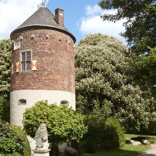 Burgturm in Davensberg