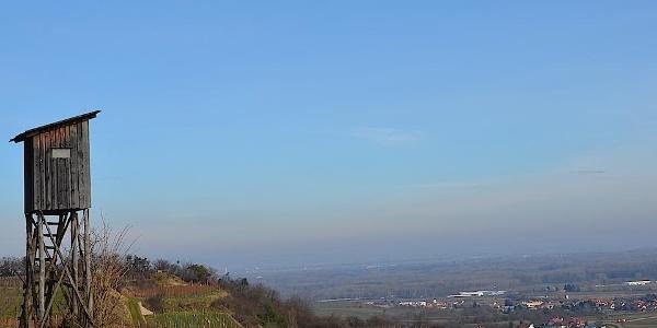 Blick ins Donautal und Tullnerfeld