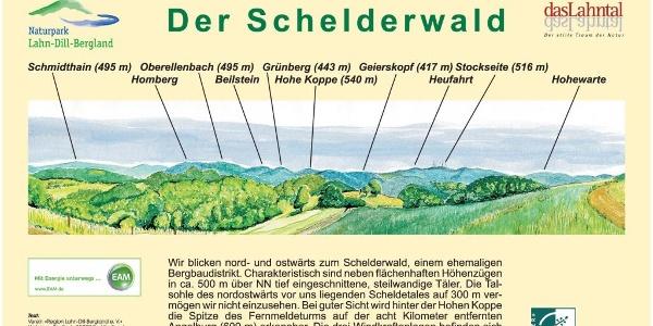 Panorama Schelderwald