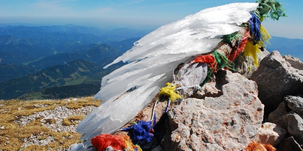 Am Schneeberg-Plateau