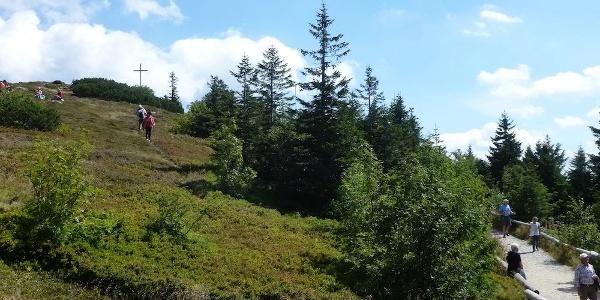 Blick zum Gipfel des Großen Arber
