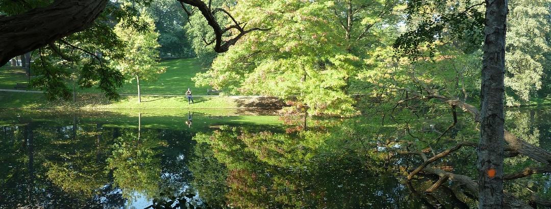 The citizen's park in Bremen