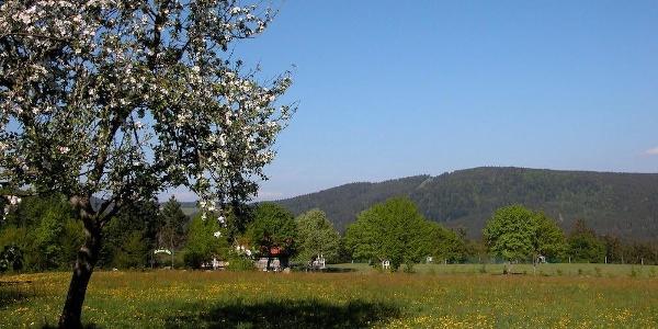 Pröller von Maibrunn