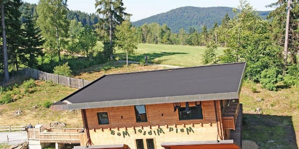 Haus am Kopf im Wald-Wipfel-Weg Maibrunn