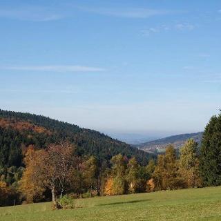 Blick vom Wanderweg nach St. Bernhard durchs Klinglbachtal