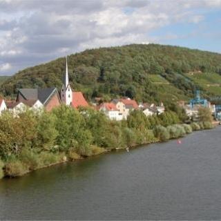 Erlenbach Uferansicht