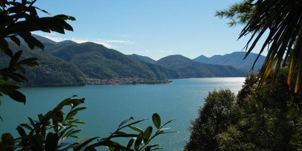 Gegenüberliegende Seeseite - Maccagno