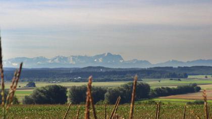 Blick über die Hügel zu den Alpen.