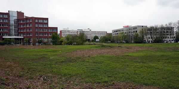 Blick in Richtung Hammfeld