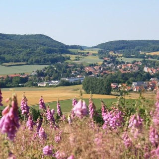 Herrlicher Ausblick auf das Ravensberger Hügelland