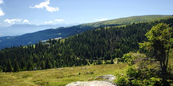 Saualpe- Blick zur Offnerhütte im Hintergrund die Karawanken