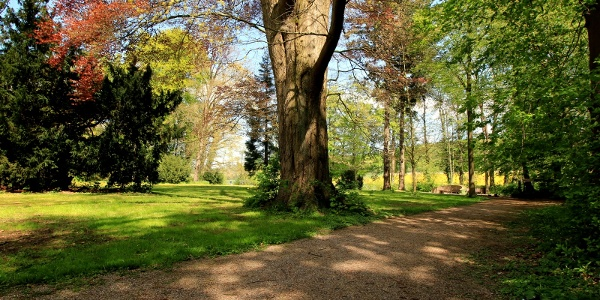 Schlosspark Wehrden 02