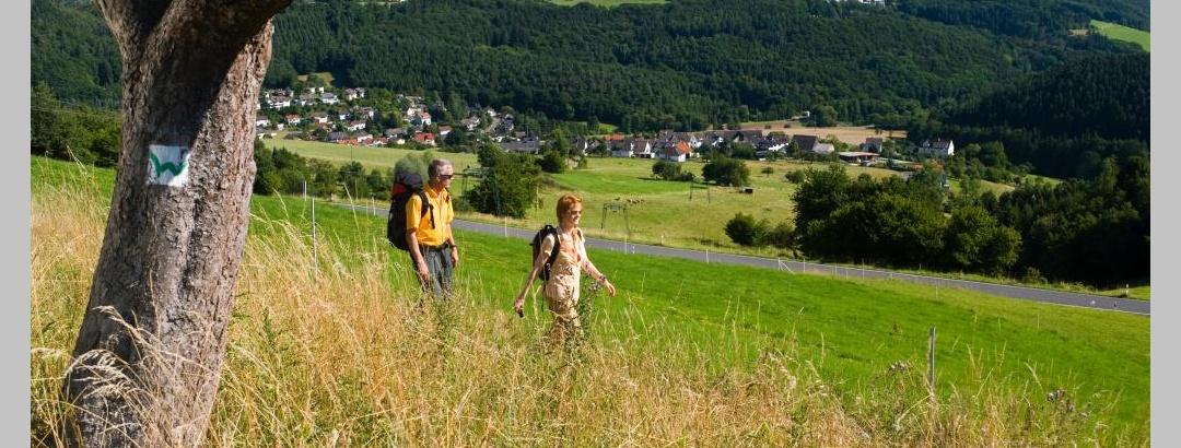 Ausblick vom Malberg
