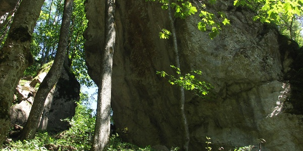 Rock walls in the Starzlachklamm